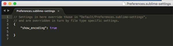 Cómo ver la codificación actual de un archivo en Sublime Text 3 - Image 2 - professor-falken.com