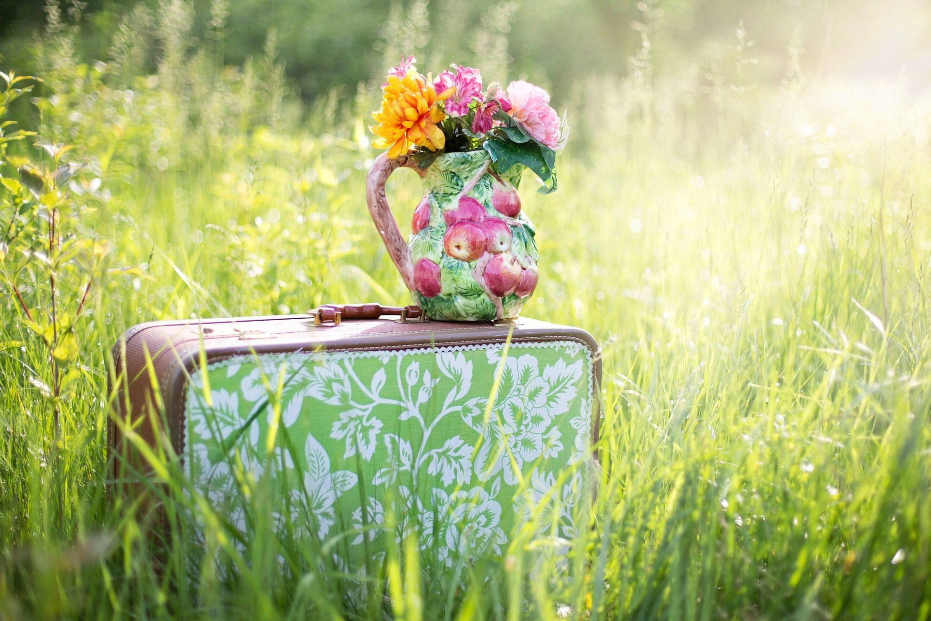 valise, vase, fleurs, domaine, herbe - Fonds d'écran HD - Professor-falken.com