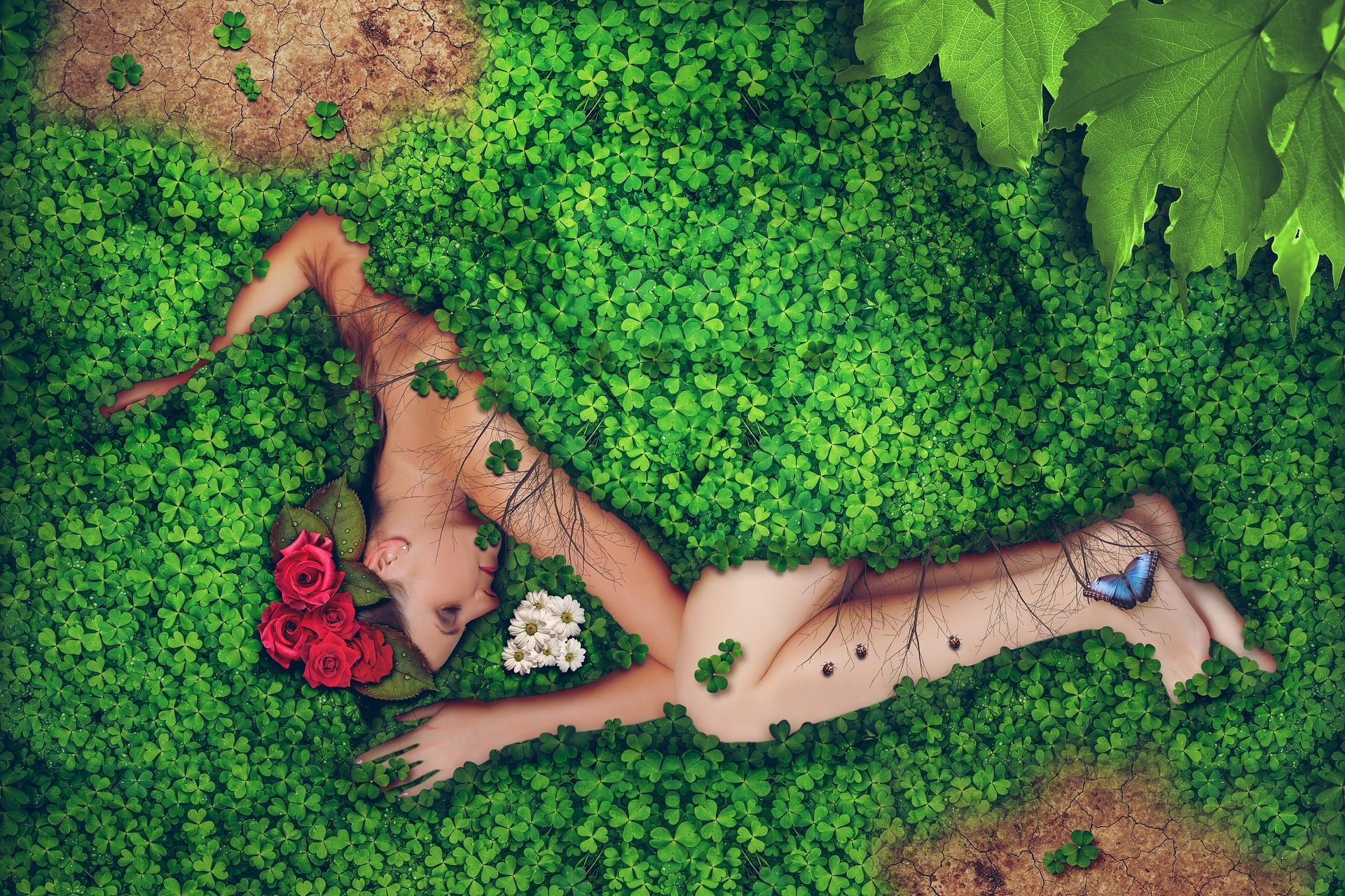 महिला, tréboles, फूल, प्रकृति, mariposa - HD वॉलपेपर - प्रोफेसर-falken.com