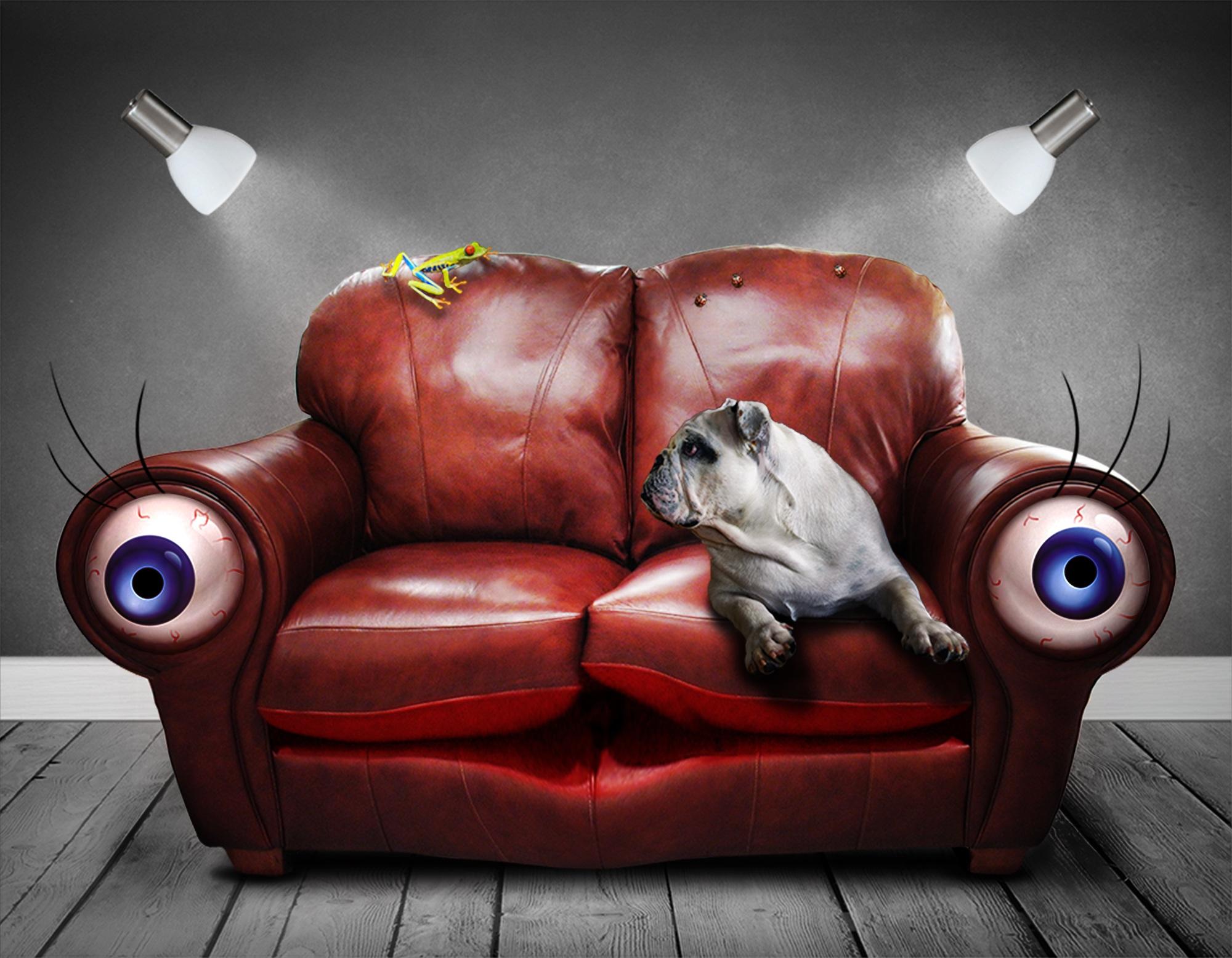 καναπέ, τα μάτια, σκύλος, σουρεαλιστικά, φαντασία - Wallpapers HD - Professor-falken.com