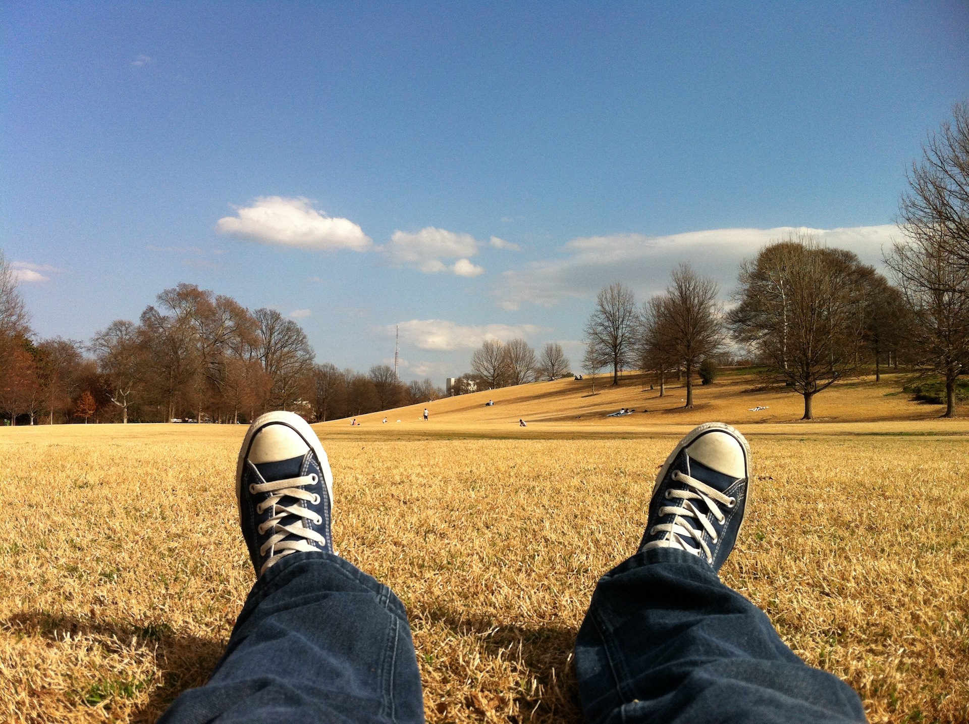 sapatos, descanso, Parque, grama, seca - Papéis de parede HD - Professor-falken.com