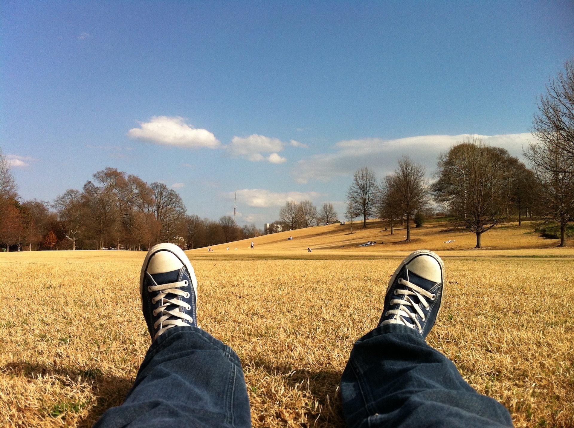 chaussures, reste, Parc, herbe, sec - Fonds d'écran HD - Professor-falken.com