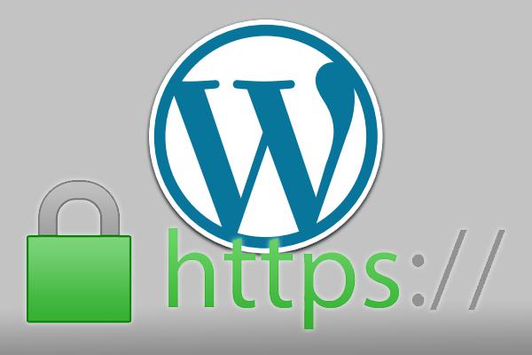 Gewusst wie: verwenden Sie diese Protokolle SSL und HTTPS in WordPress - Prof.-falken.com