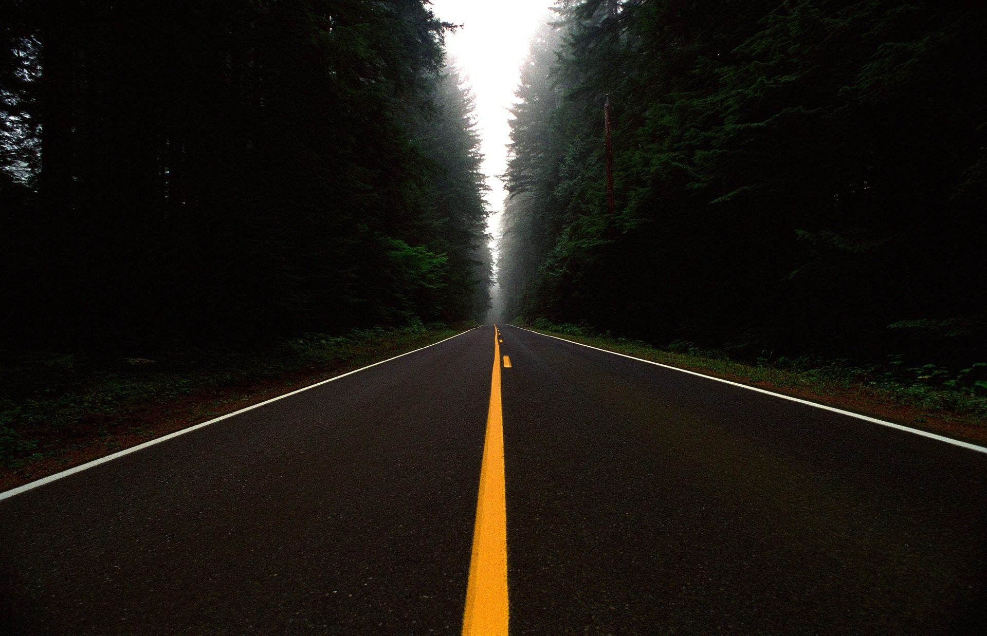 Δρόμου, Calzada, γραμμή, διαχωρισμός, δάσος, σόλο - Wallpapers HD - Professor-falken.com