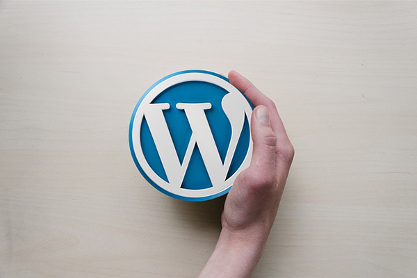 Como modificar a categoria com base no seu site WordPress - Professor-falken.com