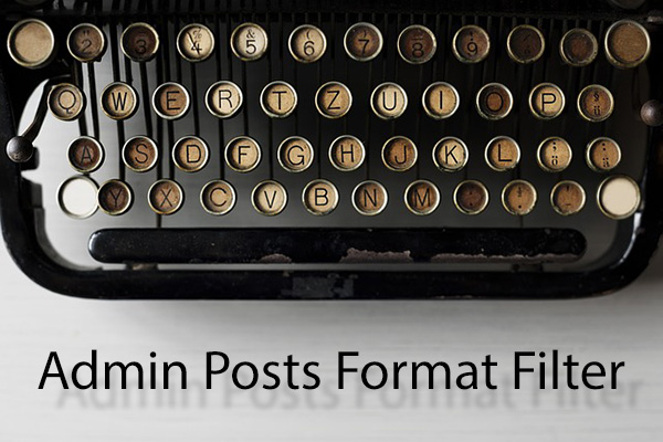 Admin Posts Format Filter - professor-falken.com